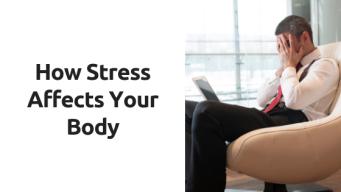 blog-post- stress.png